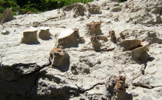 Earth micro-pyramids (Val d'Orcia, Tuscany)