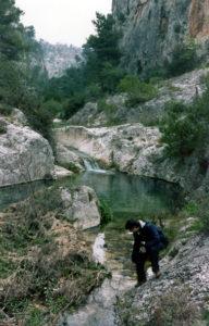 Marmitte nei calcari sul fondo della Gravina di Leucaspide presso Taranto